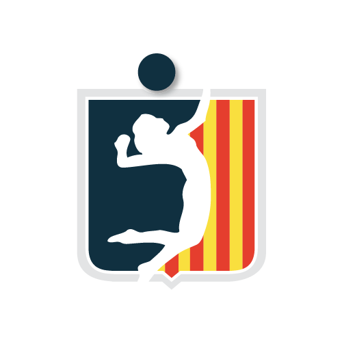 Club Voleibol Digrafics Estudio Diseño Grafico Web Altea